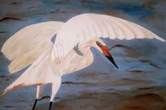White Heron 20 x 16 $200