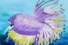 Purple-Betta-16-x-20   $200