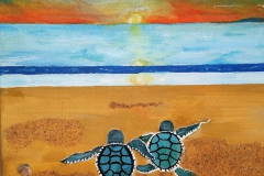 Two Turtles 12 x 9  $75