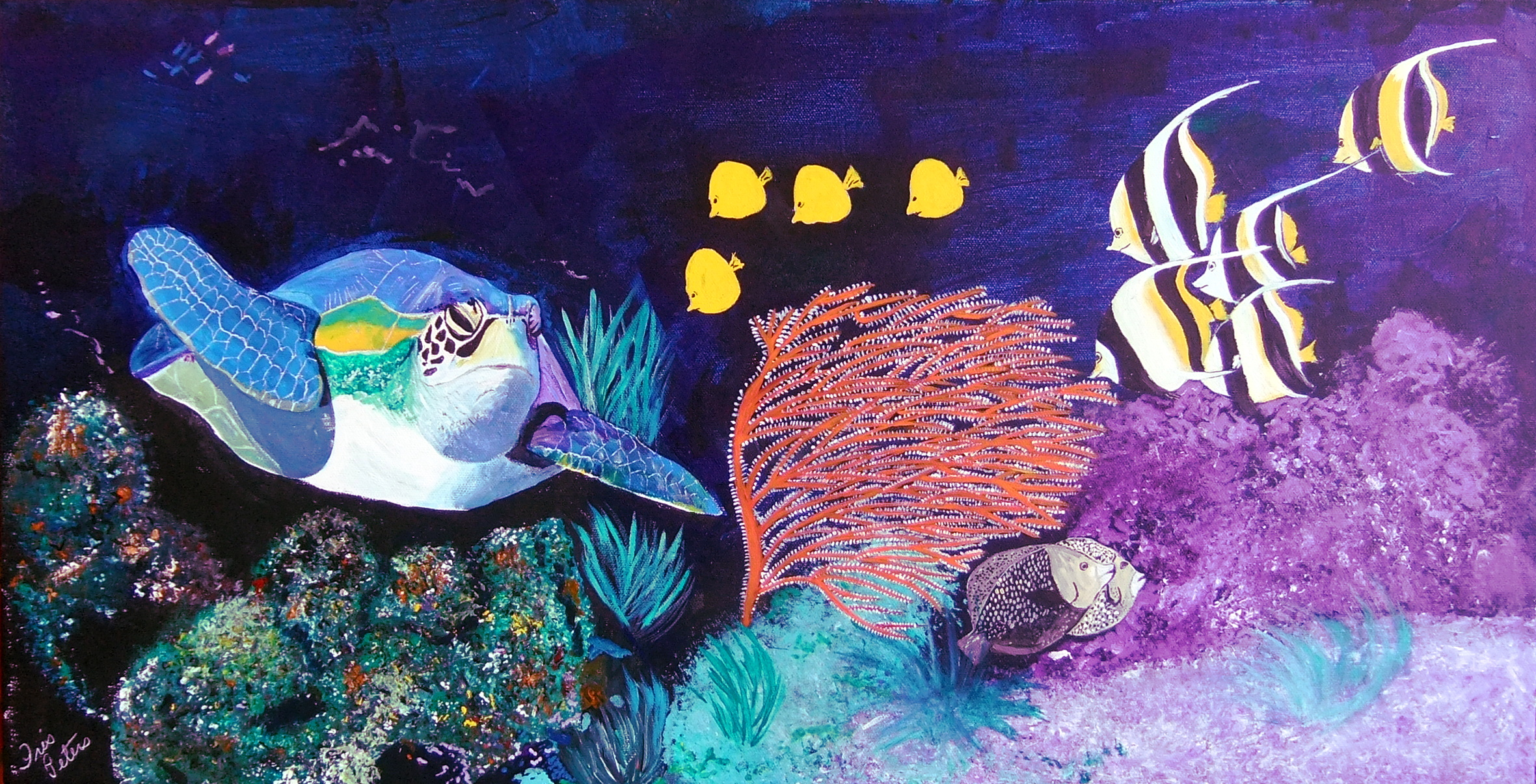under the sea party 30 x 15    $250