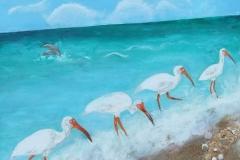 Ibises-on-the-Beach-24-x-24-1
