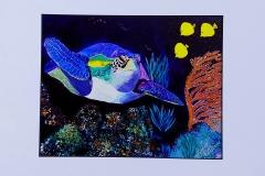 lone turtle print   total size 14 x 11    $25